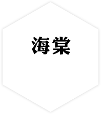 青海海棠建设